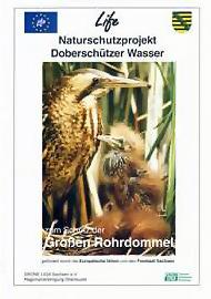 doberschuetzer_wasser